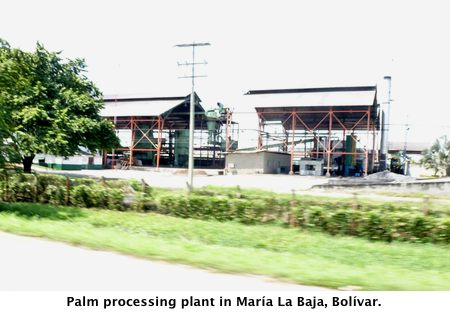Palm processing plant in Mar?a La Baja, Bol?var